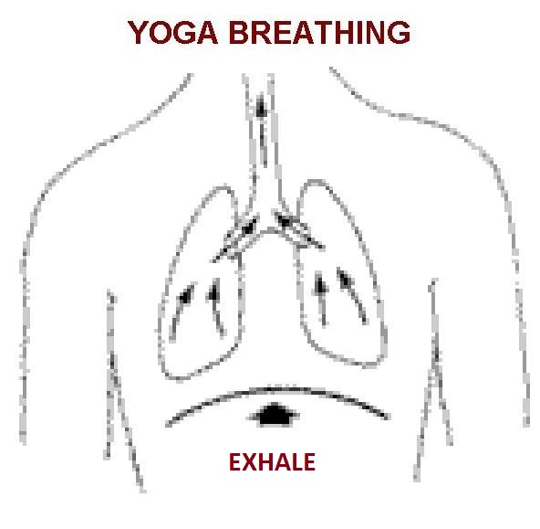 meditation techniques, Deep Breathing Exercises, yoga breathing, Diaphragmatic breathing, Abdominal Breathing, Belly Breathing Inhale