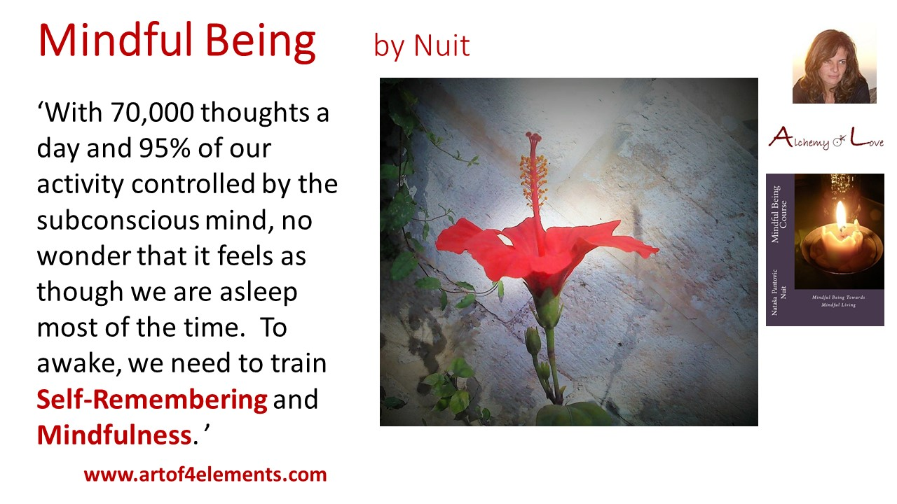 70000 thoughts from cultivate creativity mindful being by Nuit quote