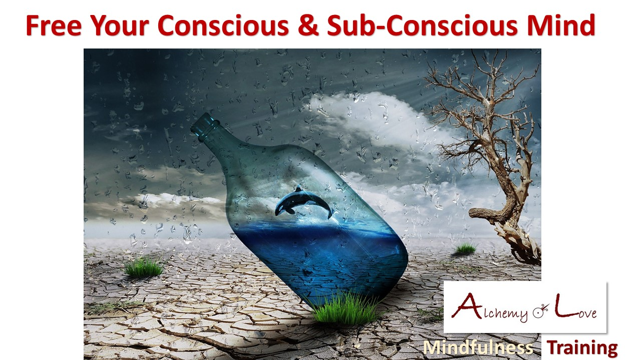 Mindful Being quote by Nataša Pantović Free your Conscious and Subconscious Mind