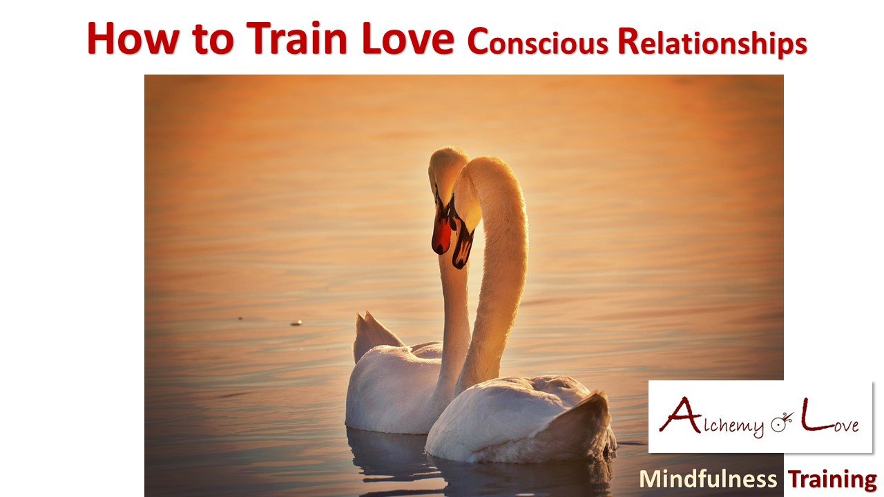 Conscious Relationships: How to train love