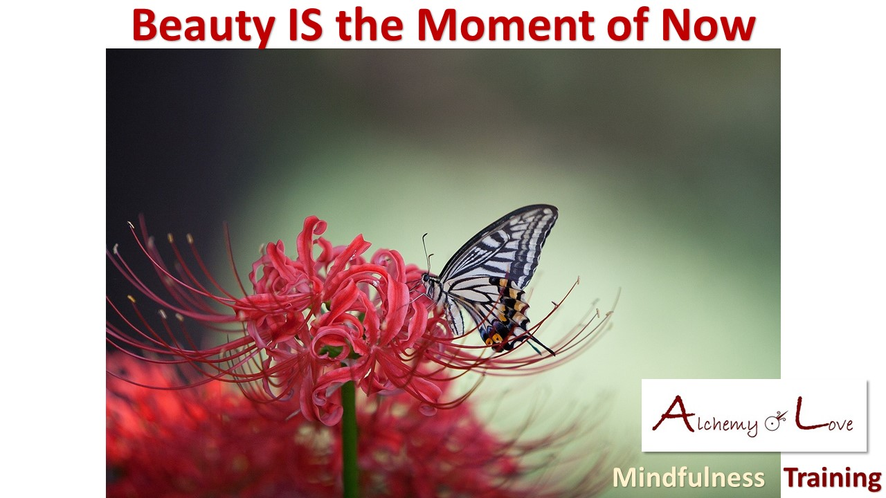 living in the present moment and beauty
