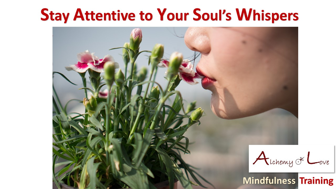 soul whisper mindfulness training alchemy of love quote from Mindful Being by Nuit