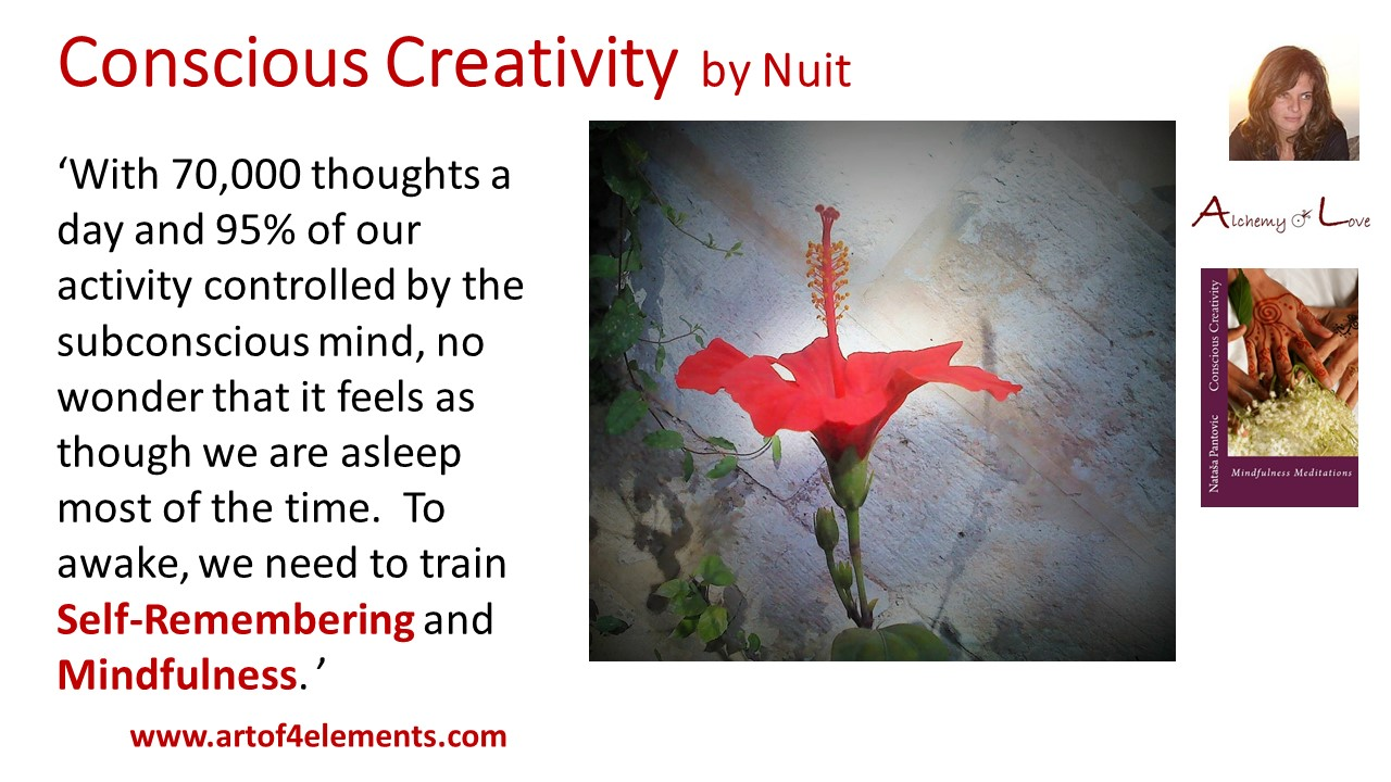 thoughts conscious creativity mindfulness meditations book quote by Nataša Pantović Nuit