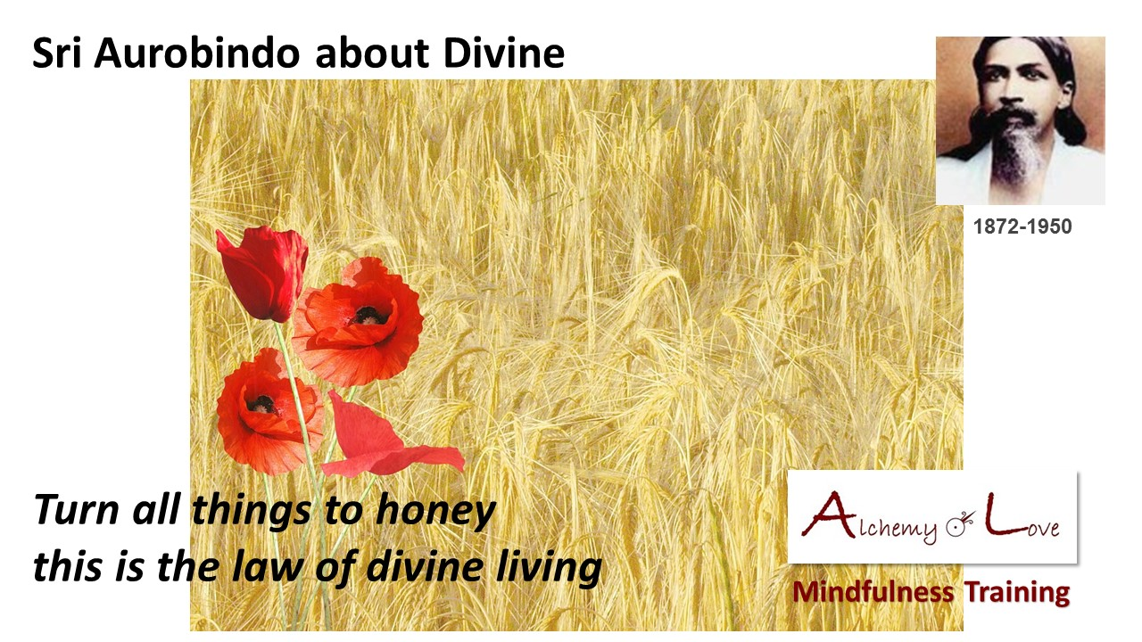 sri-aurobindo-divine-living-spiritual-quote-about-honey