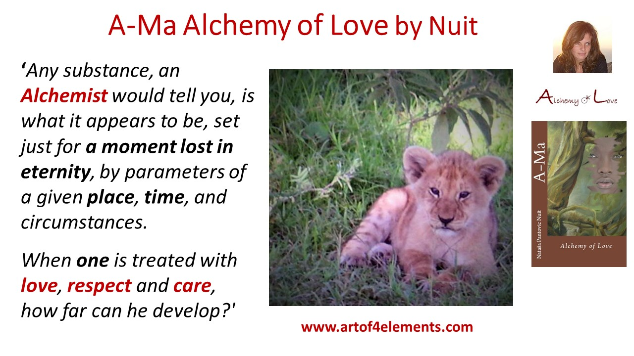 Applying Wisdom Supported Pure Logic within Chaos ama alchemy evolution quote from Ama Alchemy of Love by Nataša Pantović Nuit