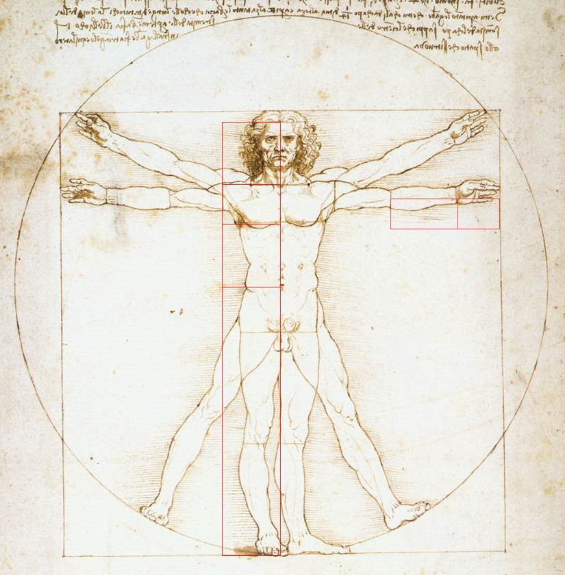 Da Vinci Vitruvian Man Golden Ratio Symbolism