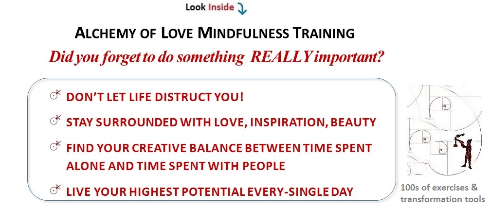 alchemy of love mindfulness training