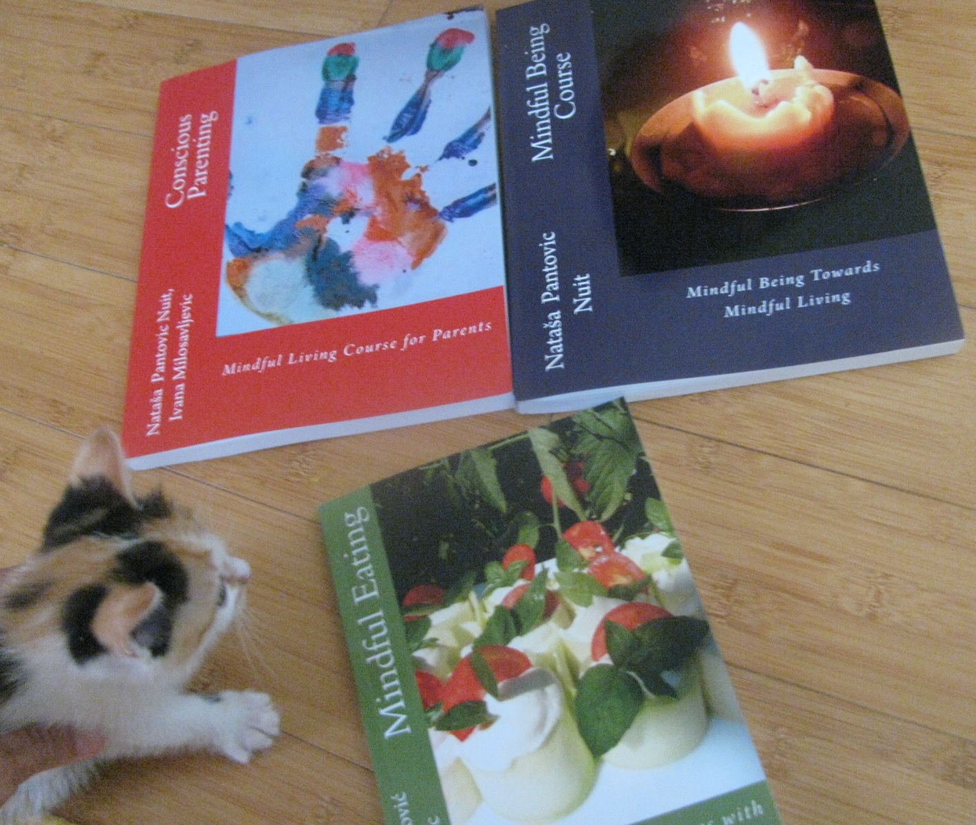 Alchemy of love mindfulness training books: Conscious Parenting, Mindful Eating, Mindful Being