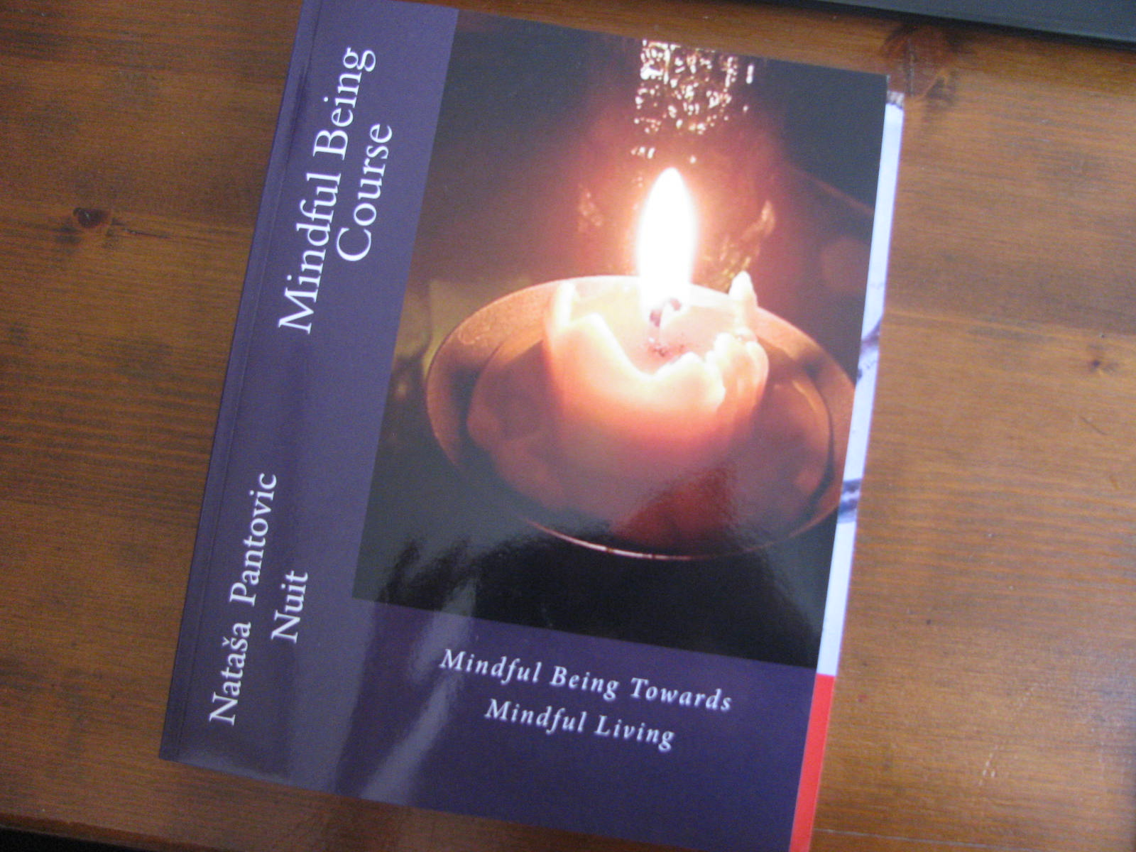 Alchemy of love mindfulness training book: Mindful Being