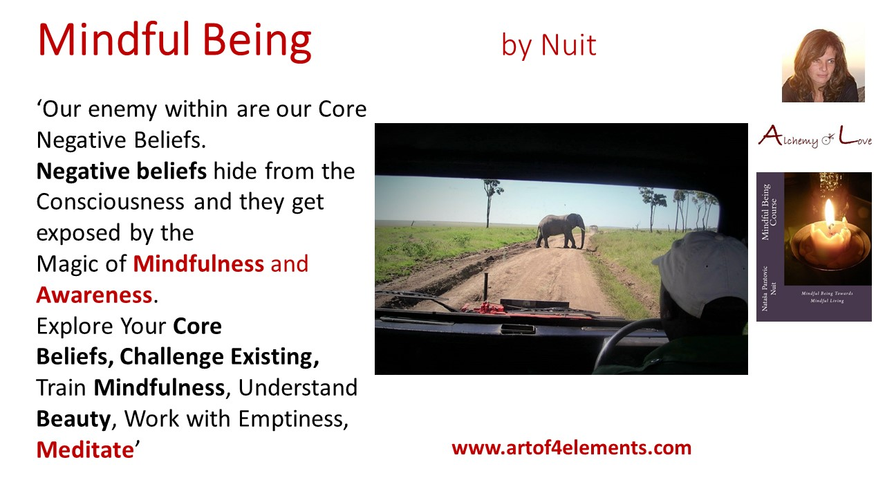 Alchemy of love courses quote about core beliefs by Natasa Pantovic Nuit