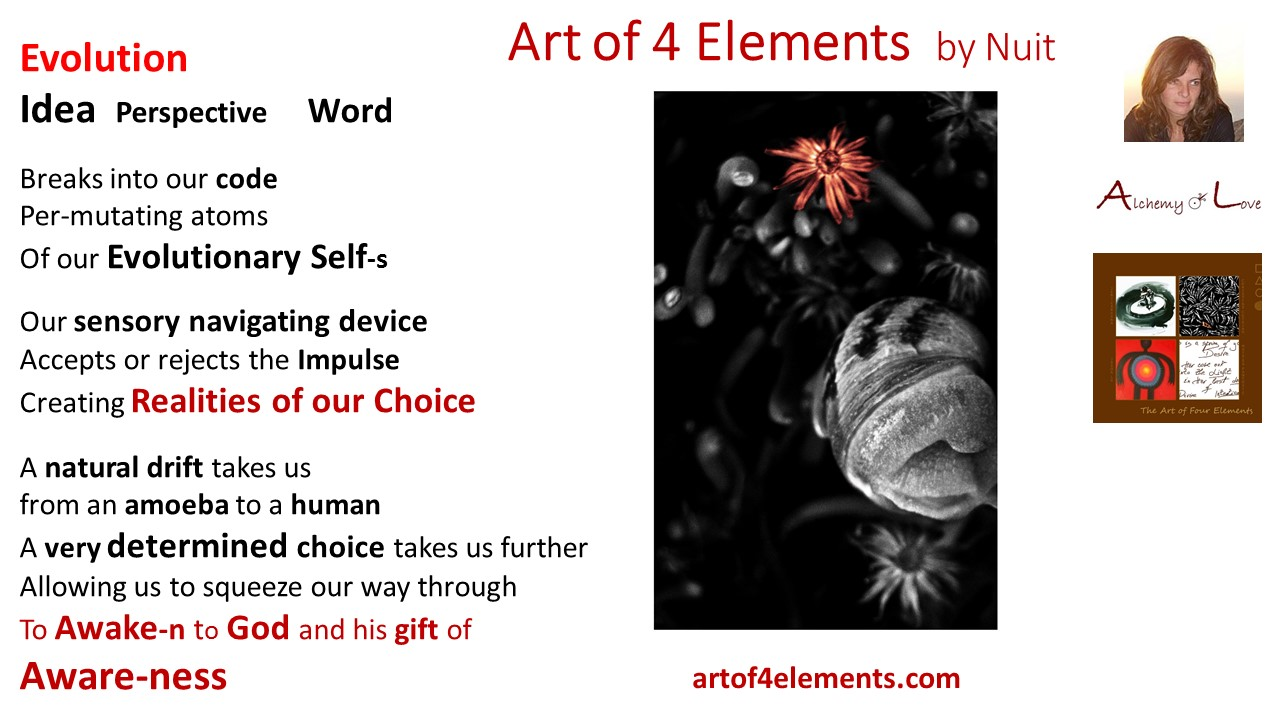 Art of 4 Elements Poem Spiritual Evolution by Nataša Pantović Nuit