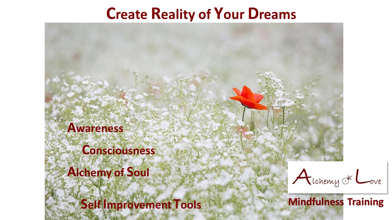 Consciousness Reality of Your Dreams Mindfulness Training