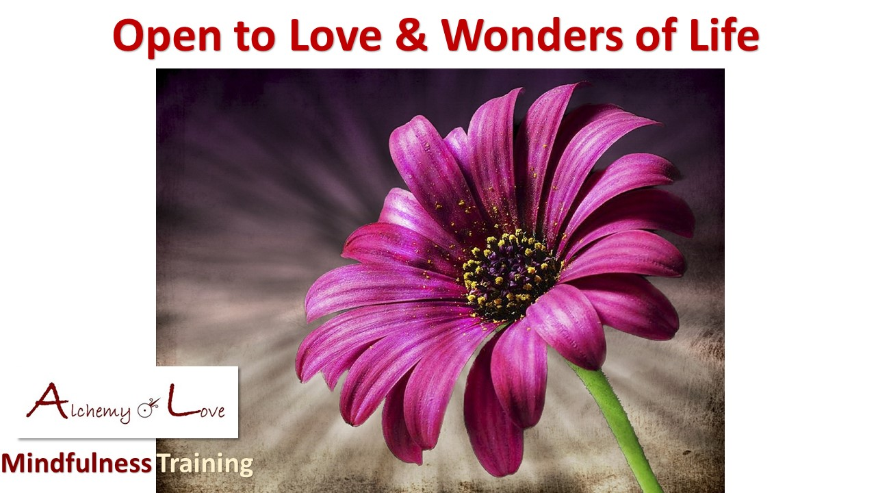 what is unconditional love: open to love