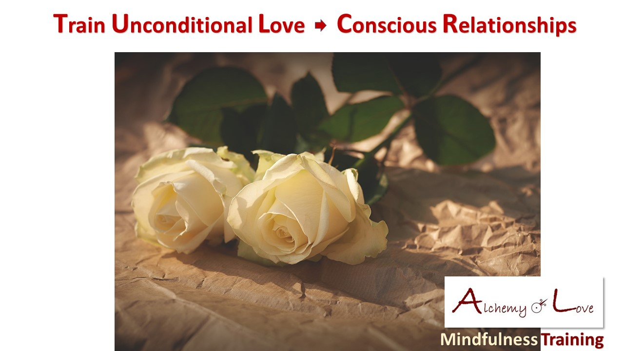 train unconditional love mindfulness training alchemy of love