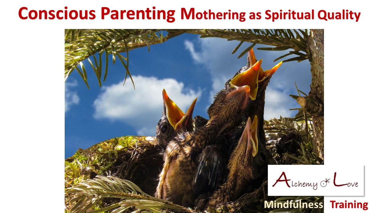My Adoption Journey: Conscious Parenting Mothering as Spiritual Quolity