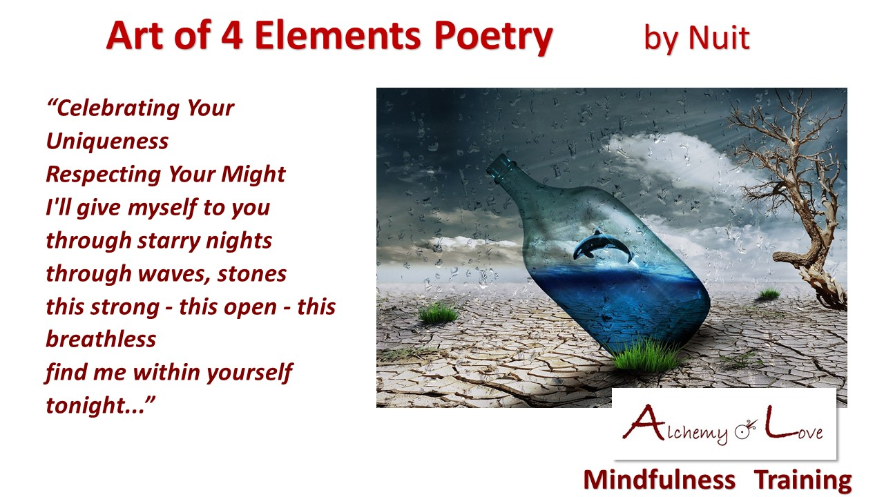 Celebrating your uniqueness Art of 4 Elements Poetry by Nataša Pantović Nuit
